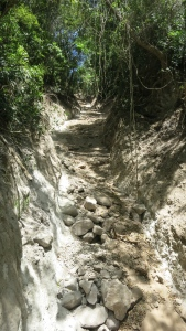 Where the trail washed out