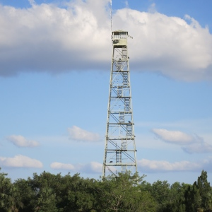 A lookout tower near Fakahatchee. Note the air conditioner box on the side and vultures roosting on the structure.