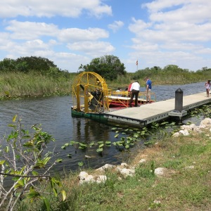 Airboats are a common way to get around the swamps because all you need to draft is a couple inches. We decided to not go on one and instead keep our hearing.