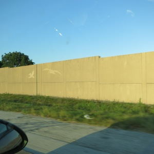 The sound barriers along the freeway here are stamped with silhouettes of local animals.