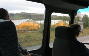Bananas have been grown in these greenhouses (they leave the lights on 24/7 in the winter), fully heated and powered by geothermal energy. it is the furthest north bananas have been grown, just shy of the Arctic Circle