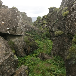 Thingvellier National Park. One of the cracks formed by the increasing rift between the North American Plate and the Eurasian Plate