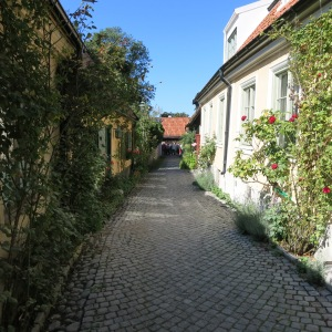 Visby, Gotland. This street, called Fiskagränd, was the old fish market and is one of the most photographed places in all of Sweden. We were lucky to be there while the roses were still blooming