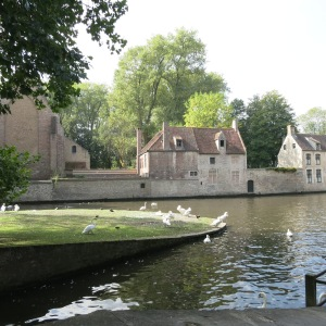 Our first view of the old center of Bruges was looking across a canal with many of swans.