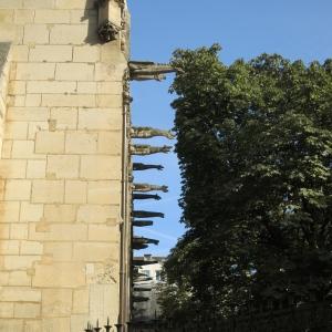 Wall O' Gargoyles. Église Saint-Séverin.