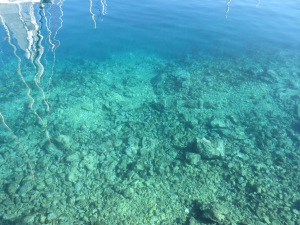 The Adriatic is a lovely turquoise blue and incredibly clear. This was in a marina looking through at least 8 meters of water.