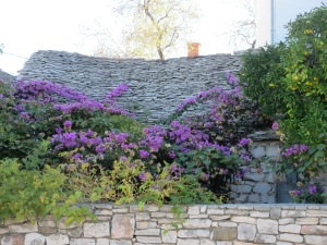 Stone roofs are common, as is bougainvillea.
