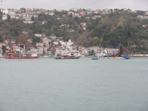 Fishing boats and seagulls in the Bosphorus.