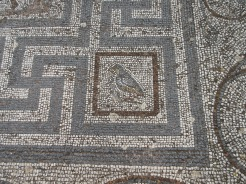 "Even the Greeks ""put a bird on it"" in this mosaic floor. Ancient Agora on Kos."