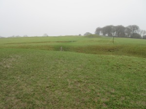 Hill of Tara in the sideways rain.