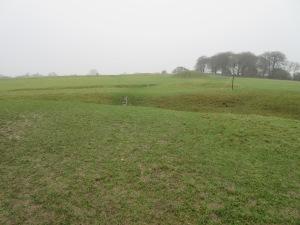 Hill of Tara in the sideways rain.